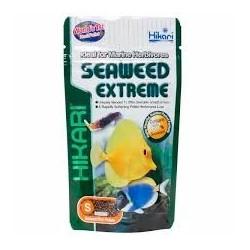 Seaweed Extreme Hikari