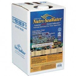 Acqua marina pronta per l'uso