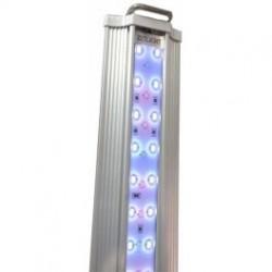 Plafoniera ZP4000 acqua dolce 1047mm
