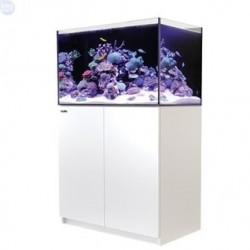 Reefer system 250 Red Sea