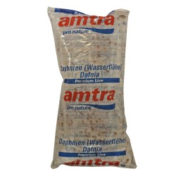 Live Daphnia Amtra 80 ml...