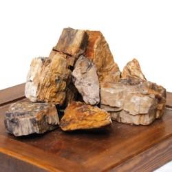 Roccia Petrified