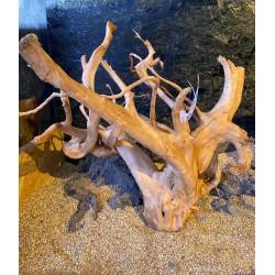 DRIFT WOOD RAMO radici legni