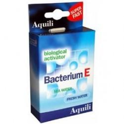 Aquili Bacterium E 12...